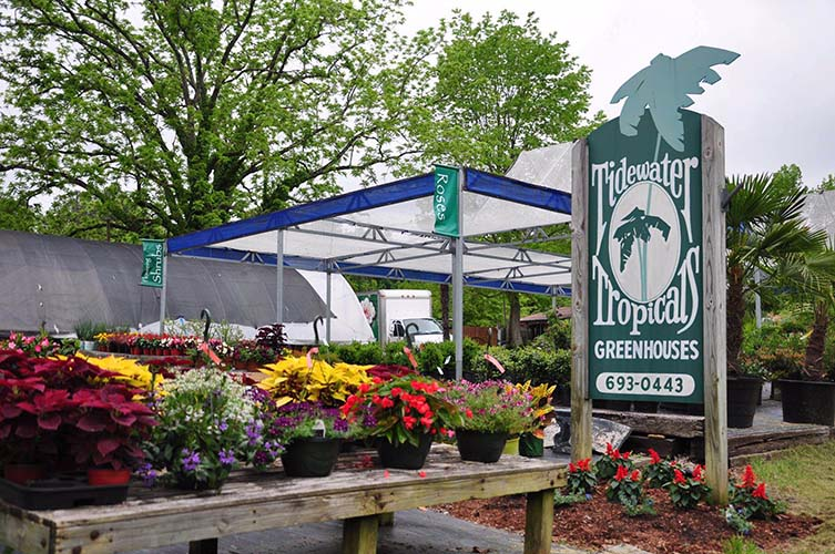 Tidewater Tropical Greenhouses